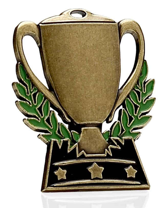 Bronze Winners Medal