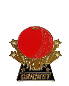 Cricket Medal - Wee County Trophies