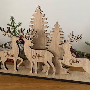 Reindeer Personalised Scene